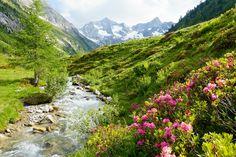 Steiermark,