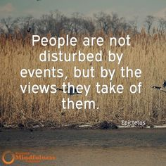 People are not disturbed by the events but by the views they take of them. - Epictetus