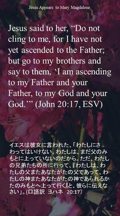 "Jesus said to her, ""Do not cling to me, for I have not yet ascended to the Father; but go to my brothers and say to them, 'I am ascending to my Father and your Father, to my God and your God.'"" (John 20:17, ESV)イエスは彼女に言われた、「わたしにさわってはいけない。わたしは、まだ父のみもとに上っていないのだから。ただ、わたしの兄弟たちの所に行って、『わたしは、わたしの父またあなたがたの父であって、わたしの神またあなたがたの神であられるかたのみもとへ上って行く』と、彼らに伝えなさい」。(口語訳 ヨハネ 20:17)"