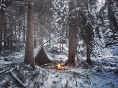 Winter camp, Swiss Mountain Forest