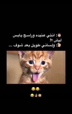 Jokes Quotes, Funny Quotes, Funny Memes, Arabic Funny, Bad Girl Aesthetic, Instagram Highlight Icons, Health Facts, Sadness, Laughter