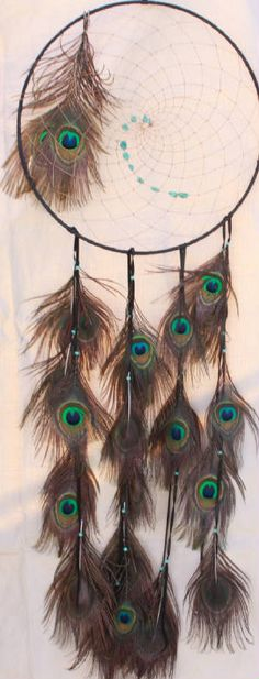 Dream catcher Dreamcatchers, Medicine Wheel, Feather Crafts, Bad Dreams, Peacock Feathers, Peacock Colors, Sun Catcher, Mobiles, Wind Chimes
