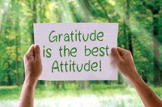 How to Do a Post-Holiday Detox #detox #newyear #gratitude