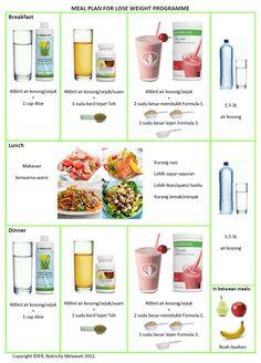Herbalife Meal Plan and Workout | Pengedar Herbalife Malaysia : 013-3387105: PROGRAM HERBALIFE : LOSE ...