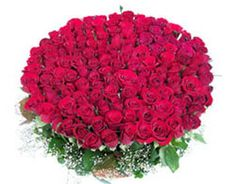 Bunch Of 151 Red Roses #RedRoses