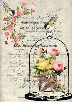 3 Sheets LOVE BIRD DOVES Rose Basket Scrapbook Gifted Line Stickers