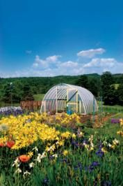 Use a plastic or metal hoop structure (PVC pipe works perfectly) to create a dome structure. Cover it in clear plastic for an affordable backyard greenhouse. Get the tutorial at Mother Earth News. Cheap Greenhouse, Portable Greenhouse, Backyard Greenhouse, Mini Greenhouse, Greenhouse Wedding, Greenhouse Plans, Pallet Greenhouse, Homemade Greenhouse, Greenhouse Farming