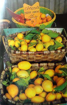 Les citrons de Menton en Provence