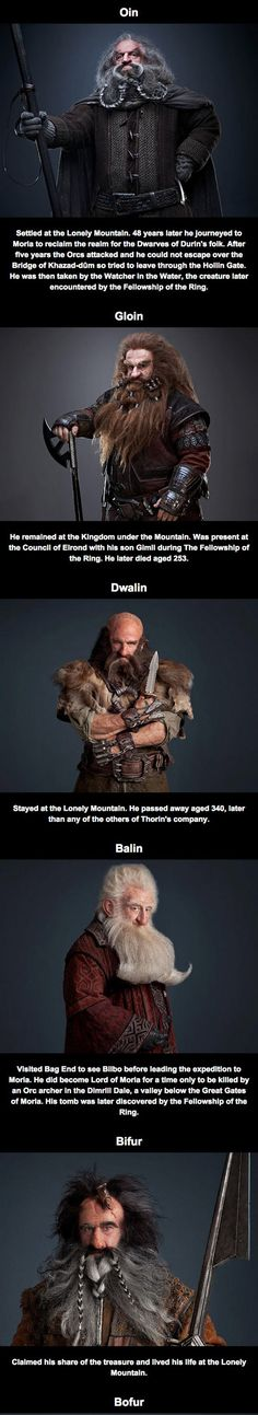 What Happened To The Other Dwarves After The Hobbit