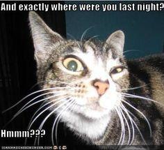 Where were you Last Night....?