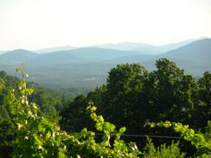 Atop Carter Mountain, just south/southeast of the City of Charlottesville Charlottesville, River, Mountains, City, Nature, Pictures, Outdoor, Photos, Outdoors