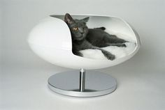 """Christian Ghion, """"Perfect Pet Capsule.""""  Sadly, this is just a concept and not actually in production."""