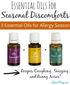 <p>I+have+been+asked+a+lot+recently+if+there+are+any+ Essential+Oils+for+Seasonal+Discomforts,+so+here+are+some+of+my+go-to+recipes+with+Essential+Oils!+Tis+the+season+for+runny+noses+and+sneezing,+especially+where+I+live.+Here+are+my+favorite+Essential+Oils+for+Seasonal+Discomforts so+that+I+…</p>