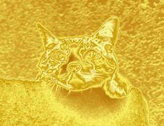 スマホの待ち受けに設定するだけ!超強力な金運アップ画像30選!   風水や開運法をご紹介!金運を運ぶブログ「金の宝船」