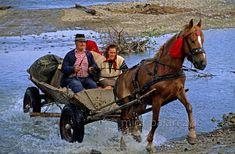 Rural Romania: Wolf People in Sheep's Clothing - Smit & Palarczyk Wolf People, Irish People, Carpathian Mountains, Romania, Sheep, Plum, Medieval, Cycling, Europe