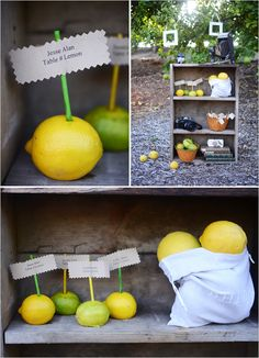 lemons and limes for a yellow and green wedding