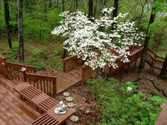 Ready to build a deck? We'll help you find the right type and design for your outdoor space along with  the best place upon which to build it.: Multi-Level Deck