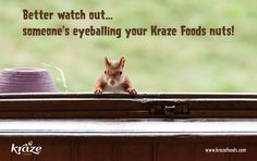 Better watch out...someone's eyeballing your Kraze Foods nuts! You can get yours from Kraze Foods when you support our INDIEGOGO campaign: https://www.indiegogo.com/projects/kraze-foods ‪#‎Krazefoods‬ ‪#‎indiegogo‬ www.krazefoods.com