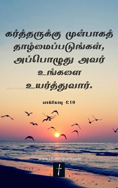 Today Promise Tamil Bible Words Pinterest Bible Words