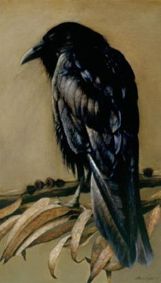Charuka, a rescued raven, painted by Mari Kloeppel exhibited through Crocker…