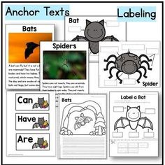 Bats and Spiders Kindergarten Science NGSS + Boom Cards™ Distance Learning. Fun science and language arts activities for fall or Halloween. Includes anchor texts, labeling, writing, graphic organizers, and digital Boom Cards™. #fall #halloween #teacherspayteachers #science #bats #spiders