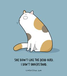 """Remember Lingvistov - the creative doodle shop (founded by Asia and Landysh) that sells awesome illustrations, including Reasons Why I Love Her"""" , Crazy Cat Lady, Crazy Cats, Cool Cats, I Love Cats, Round Robin, Soft Kitty Warm Kitty, Cat Comics, Funny Comics, Cat Quotes"""