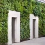Since Earth Day is this week, it's a perfect time to highlight ways to make living walls even greener. Here are 9 earth-friendly living wall considerations. Eco Architecture, Longwood Gardens, Wall Installation, All Nature, Green Building, Sustainable Design, Wall Lights, Indoor, Outdoor Structures