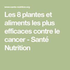 Les 8 plantes et aliments les plus efficaces contre le cancer - Santé Nutrition