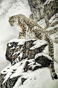 Snow Leopard 神々しい
