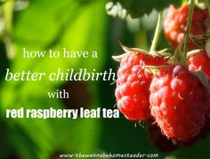 How to Have a Better Childbirth with Red Raspberry Leaves.https://modernegeitenwollensokkenmama.wordpress.com/