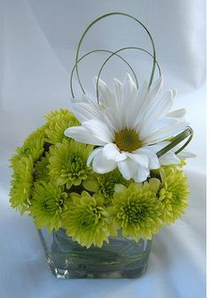 daisy flower arrangement centerpieces | daisy green grass loop for wedding arrangement.PNG