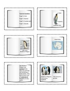 Text Features Freebie Non-fiction Text Features Freebie - Mrs. Wheat - Non-fiction Text Features Freebie - Mrs. Kindergarten Reading, Teaching Reading, Teaching Tools, Teaching Resources, Teaching Ideas, Learning, Nonfiction Text Features, Fiction And Nonfiction, First Grade Reading