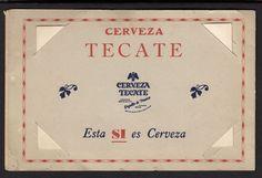 Tijuana Zebra Donkey Cart Tourists 1940s Vintage Mexico Photo Souvenir Folder…