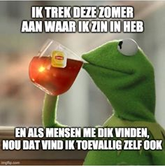 Funny Quotes, Funny Memes, Jokes, Tea Meme, Dutch Quotes, Satire, Laughter, Lol, Feelings