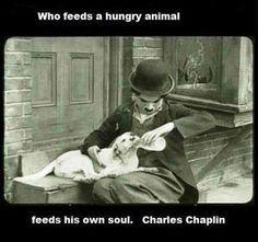 Charlie Chaplin. He wasn't just a comedian. ~ nt