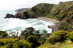 Website for Auckland Council Nz History, New Zealand Landscape, Auckland, Road Trips, West Coast, Adventure Travel, Landscapes, Old Things, Track