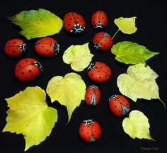 COCCINELLES   by rockpainting ☼ yvette