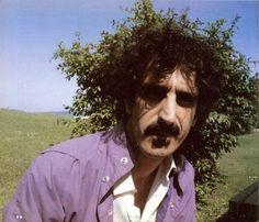 Frank Zappa's Organic Hairstyle