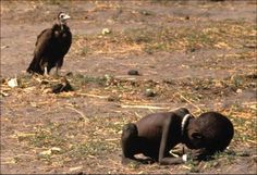 Kevin Carter committed suicide after receiving the Pulitzer prize for this photograph depicting the 1993 famine of Sudan
