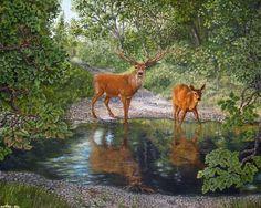 Deer Art, Moose Art, Deer Pictures, Forest Painting, Wildlife Art, Hjort, Deer Paintings, Wallpaper, Animals