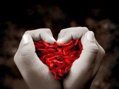 Rose, Flowers, Hearts, Wallpapers, Weddings, Sweet, Life, Attila, Creative