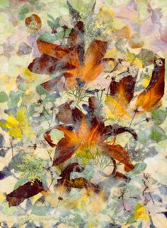 Orange Splendor - Pressed Flower Art