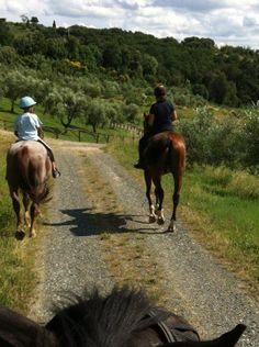 Horse riding in Tuscany for all ages