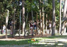 Als Belohnung freuen sich die Kinder, wenn sie sich weiter in der Walderlebniswelt umschauen und auf Entdeckung gehen dürfen! Den Balancierweg meistern, das Gleichgewicht im Slackline-Park testen oder im Fuchsbau die verschiedenen Ausgänge erproben. Ein Highlight ist auch immer das Riesenlabyrinth, die Klettermöglichkeiten oder der Flying-Fox. Labyrinth, Plants, Woodland Forest, Plant, Planets