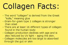Bendy Investigates: What Is Collagen?