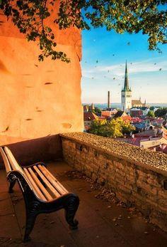 Эстония, Таллин - Путешествуем вместе