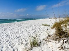 Pensacola   Plages: notre top 5   Our top 5 best beaches • ROULER SA VIE