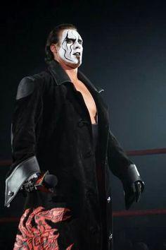 TNA World Heavyweight Champion Sting Famous Wrestlers, Female Wrestlers, Wwe Wrestlers, Global Force Wrestling, Wrestling Stars, Sting Wcw, Wrestling Superstars, Randy Orton, Michelle Rodriguez