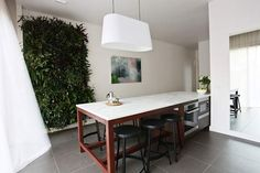 Loving the vertical garden in josh and Jenna kitchen from the block allstars 2013 Australia Kitchen Interior, Kitchen Design, Kitchen Redo, The Block Glasshouse, White Rooms, Glass House, Cool Kitchens, Dream Kitchens, Home And Living
