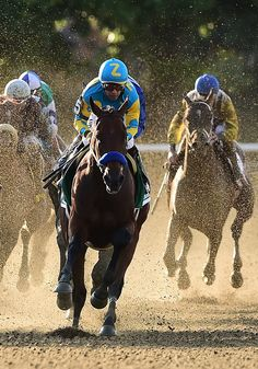 American Pharoah running in the Belmont Stakes horse race.